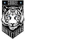 Web-logos3