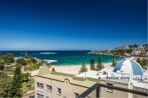 Real estate agents coogee