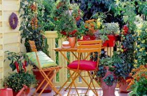 patio vegetable container garden